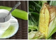 9 Benefits of Corn Silks