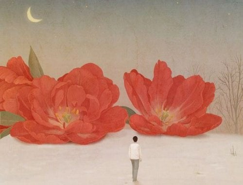 A woman looking at large red flowers.