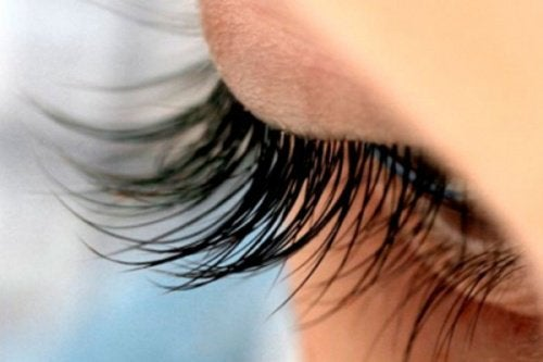 8 Healthy Tips for Beautiful, Long, and Lush Eyelashes