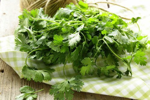 Cilantro is used in indian cooking.