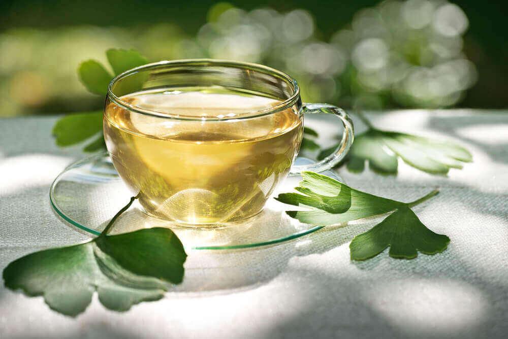 A cup of ginko biloba tea.