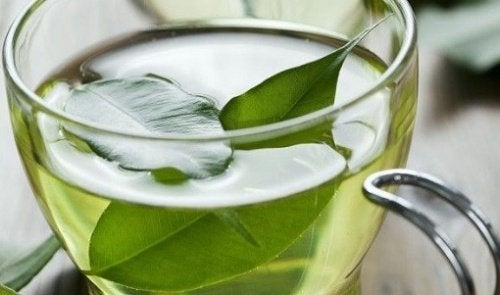 Green tea is healthy to drink to improve vaginal health