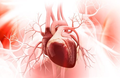 5 Keys to Prevent Broken Heart Syndrome