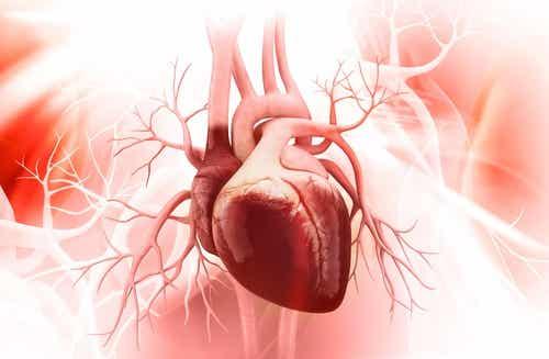 5 Keys to Prevent Broken Heart Syndrome