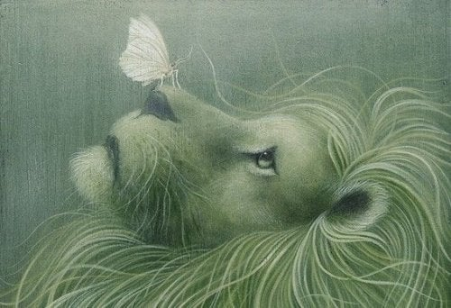 Green illustration lion with butterfly on nose give up