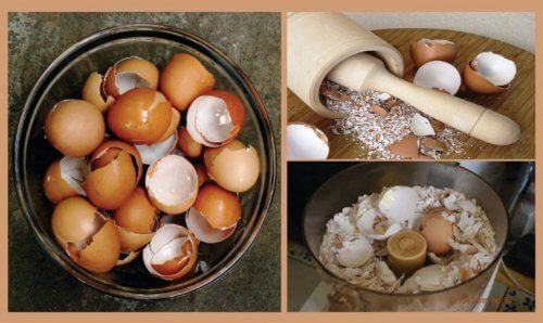 Using Eggshells to Make 6 Amazing Natural Remedies