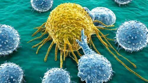 A New Molecule to Fight Ovarian and Pancreatic Cancer