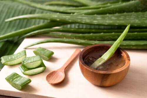 Can Aloe Vera Treat the Symptoms of Diabetes?