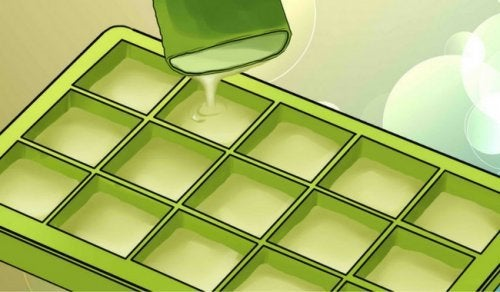 The Impressive Benefits of Freezing Aloe Vera