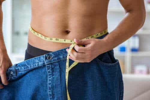 The Best Food Proportions for Weight Loss