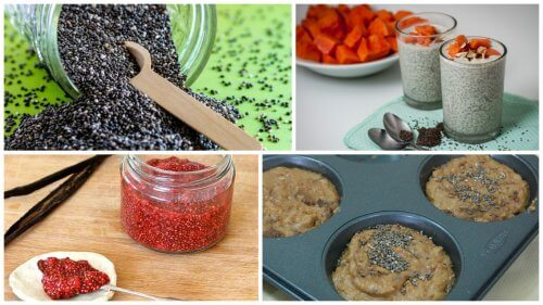 5-delicious-ways-to-enjoy-the-benefits-of-chia-seeds-500x281