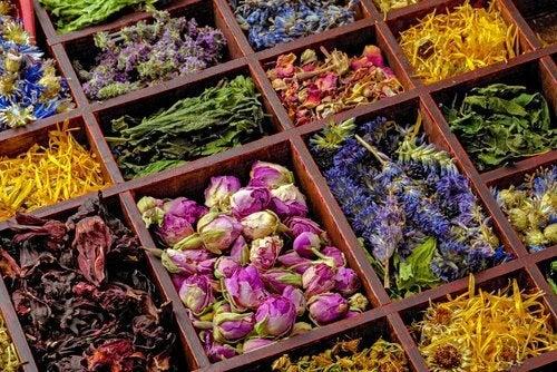 natural-herbs-500x334