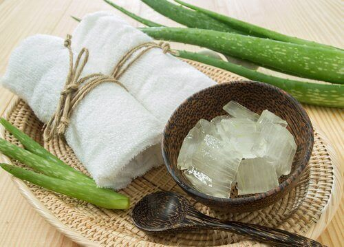 Freezing aloe vera cubes of aloe gel next to washcloths