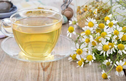 Cup of chamomile tea and flowers on table fight digestive problems