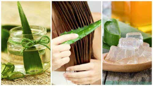5 Aloe Vera Treatments to Strengthen Your Hair