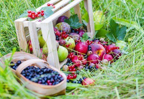 hedelmät ja marjat helpottavat ummetusta