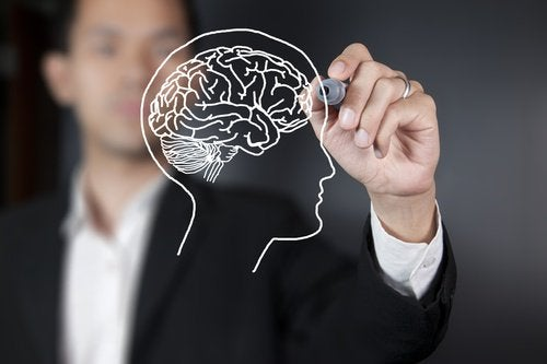 Man drawing a brain.