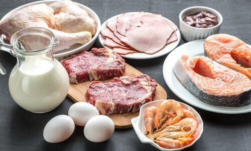 These protein foods can help you burn fat