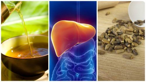 Fight Fatty Liver with These 6 Alternative Treatments