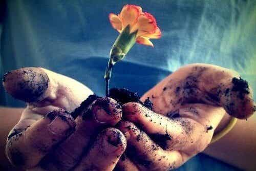 Love Should Be Nurtured and Nourished Every Day to Flourish