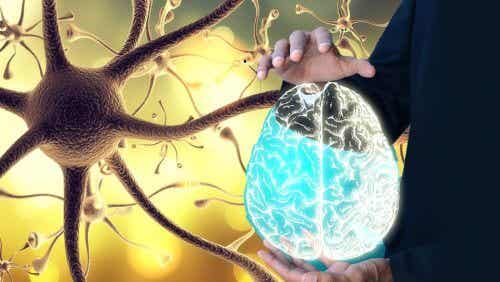 How to Wake Up Your Vagus Nerve for Better Health