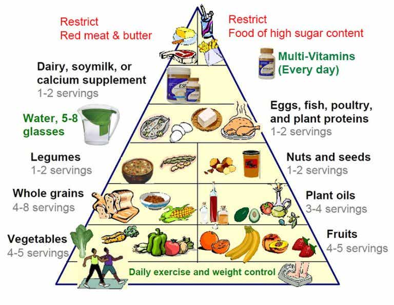 The New Food Pyramid is Key to a Healthier Life
