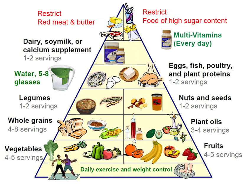 long fat protein carb diagram the new food pyramid is key to a healthier life     step to  the new food pyramid is key to a healthier life     step to