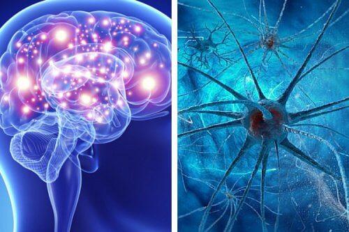 5 Habits that Harm Your Mind