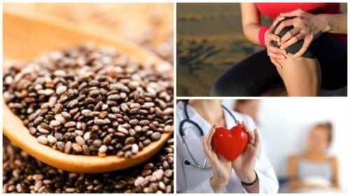 9 Amazing Benefits of Chia Seeds