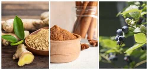 Seven Useful Herbs for People With Type 2 Diabetes