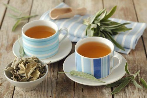 A cup of sage tea.