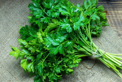 Fresh parsley.