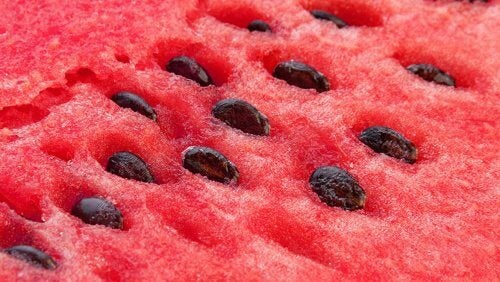 There are benefits of watermelon seeds aside from those of its juice