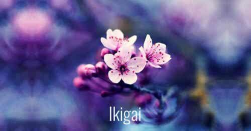 7 Beautiful Japanese Words to Facilitate Personal Growth