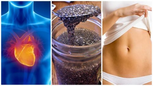 8 Reasons to Start Including Chia Seeds in Your Diet