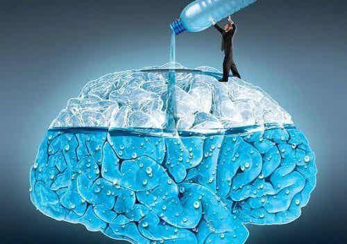 5 Amazing Ways Drinking Water Affects Your Brain