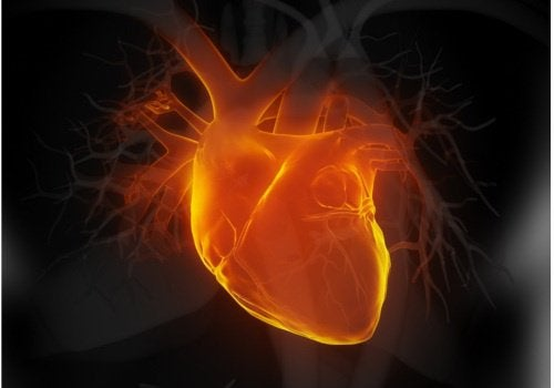 Watch for These 6 Early Signs of Heart Failure