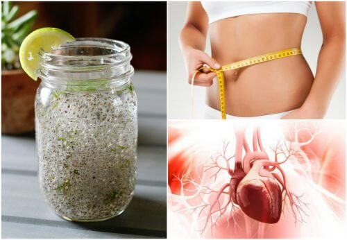 The Body's Response to Chia and Lemon Juice
