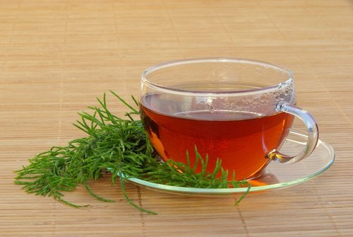 A cup of horsetail tea.