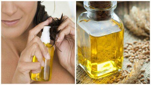 6 Ways Wheat Germ Oil Helps Your Hair