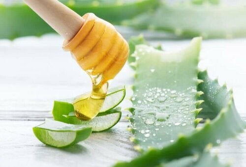 A person pouring honey on some chunks of aloe vera.