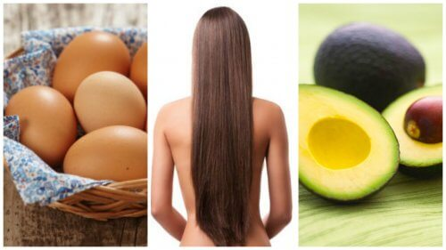 Healthy Hair Growth: Fast Results with These 8 Foods!