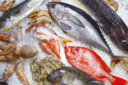 9 Kinds of Unhealthy Fish That Are Better to Avoid