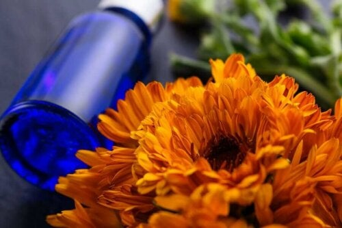 Some arnica oil beside a flower.