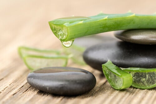 Aloe vera gel for soft skin