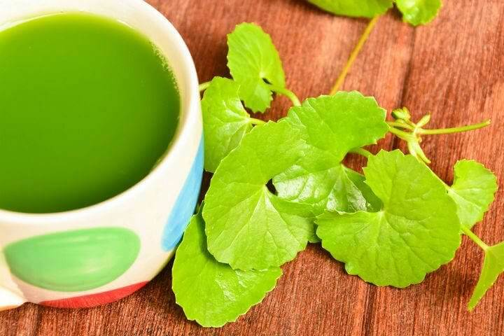 A cup of centella infusion.