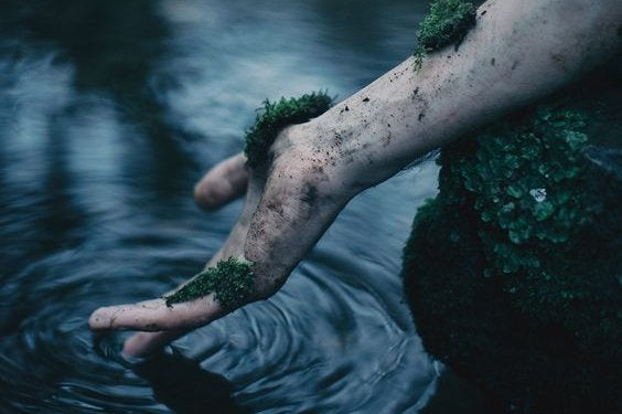 hand in the water with moss