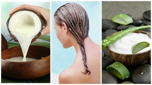 Image result for Coconut Milk for natural hair growth