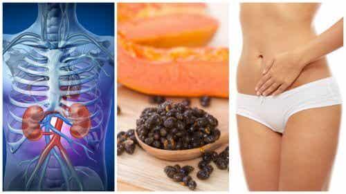 6 Wonderful and Healthy Properties of Papaya Seeds