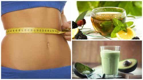 Four Ways to Drink Green Tea for Weight Loss